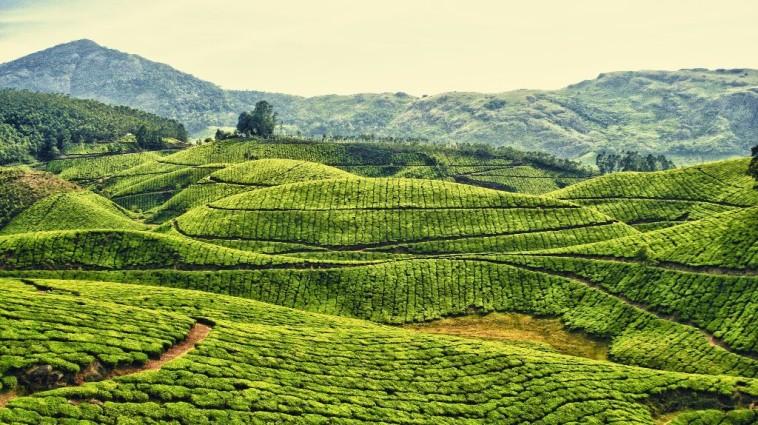 india-landscape-2560x1600